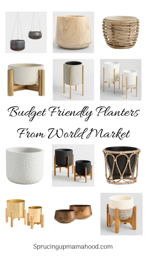Pots For Indoor Plants When On A Budget