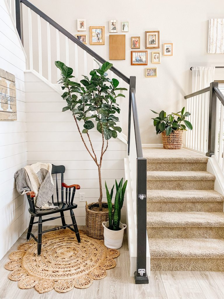 black and white staircase with jute rug and fiddle leaf fig tree