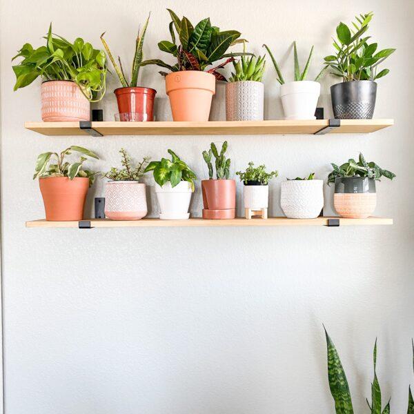 Master Bedroom Floating Plant Shelves