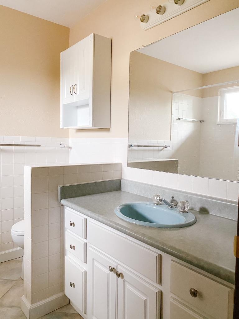 bathroom remodel before pic